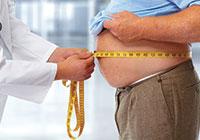 l-obesite